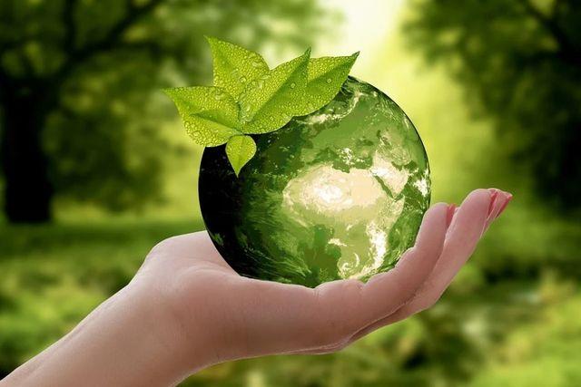 ¿Qué es la regeneración sostenible? featured image