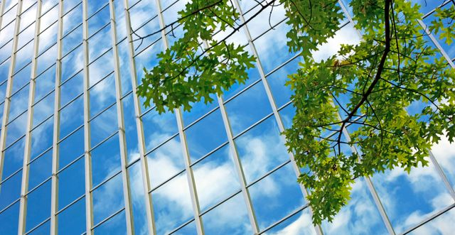 CFO Today: Add ESG to the Must Do List featured image