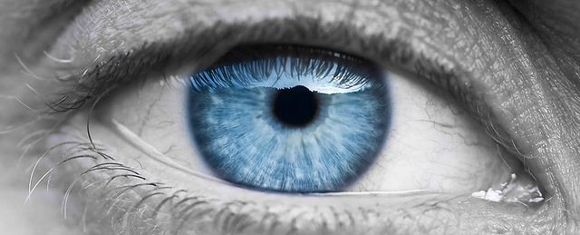 Could we be close to curing blindness? featured image