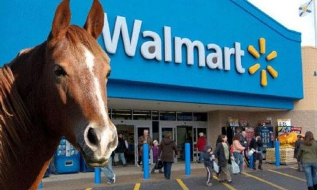 Walmart.horse taken down after UDRP plea - risk management vs trademark protection? featured image