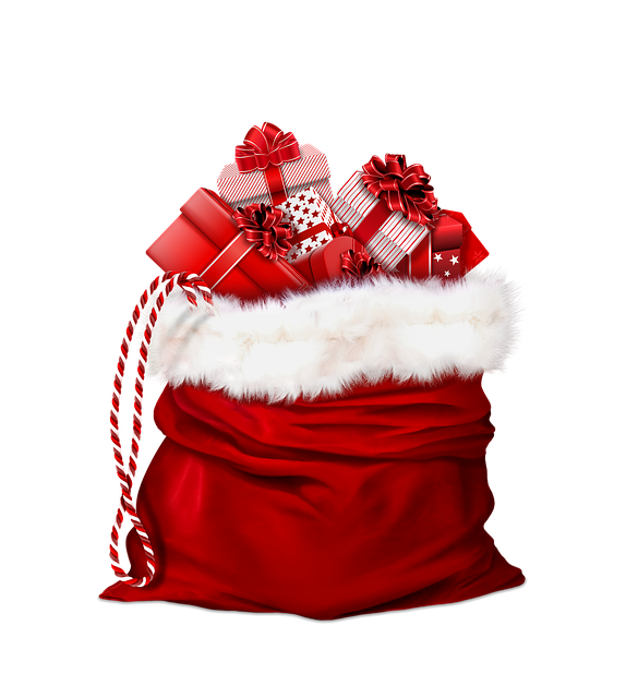 Is there something in Santa's bag for your mobility program? featured image