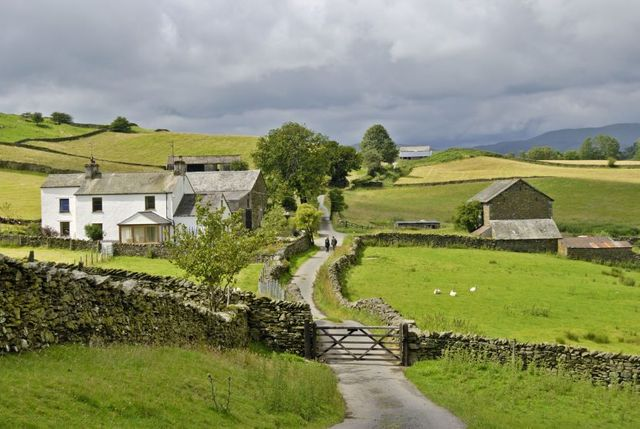 Not planning to retire? Farmers should still be planning featured image