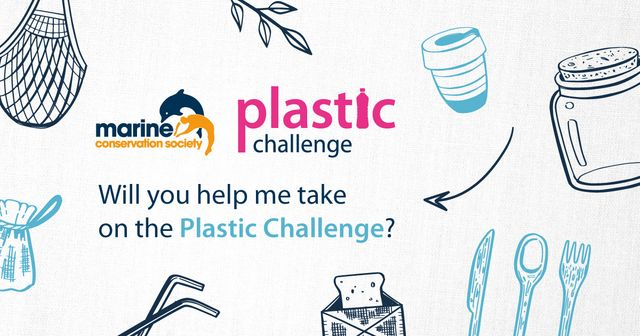 Take on the #PlasticChallenge at home this July featured image