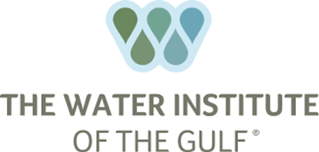Justin Ehrenwerth Named President and CEO of The Water Institute of the Gulf featured image