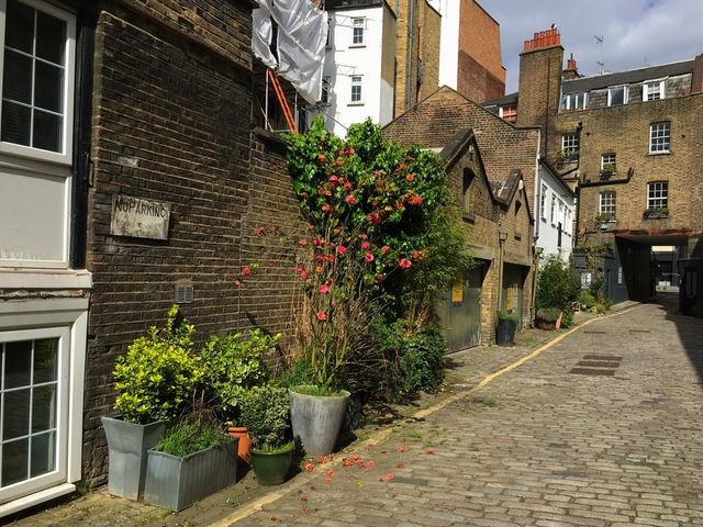London's hottest properties - converted mews houses featured image