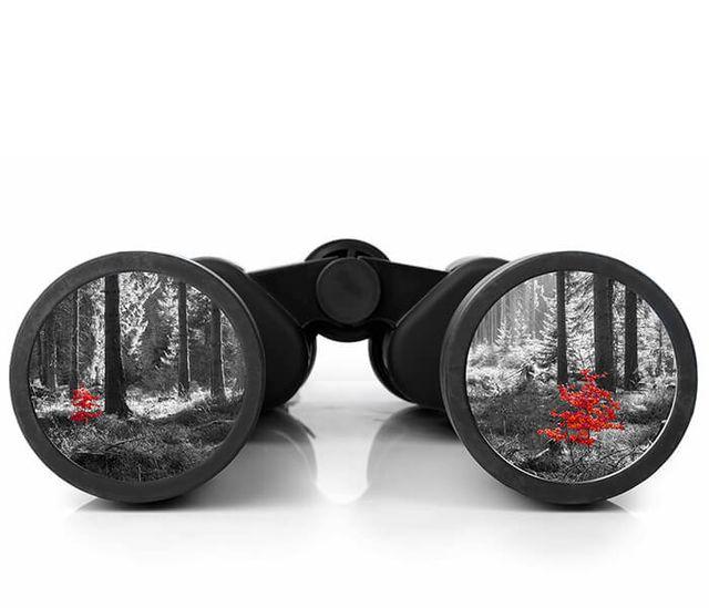 Coronovirus: a call for improving Organisational Sensemaking featured image