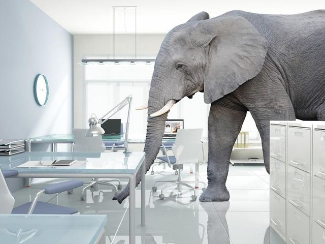 Elephants in the room part II: The future of the Big Four in the legal market featured image