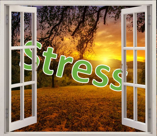 Re-Framing Stress featured image