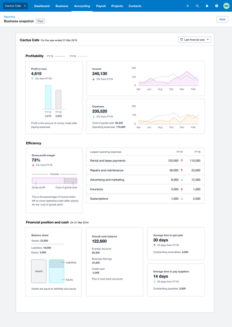 Xero Business Snapshot- A very useful business thermometer featured image