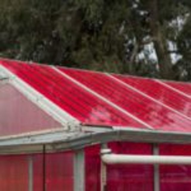 Smart Solar Greenhouse Generates Electricity & Grows Food featured image