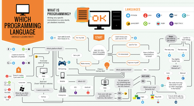 What Programming Language Should I Learn First? featured image