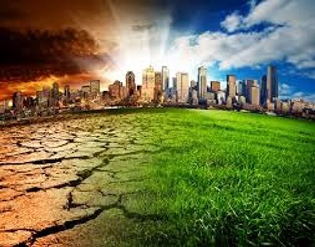 Winds of change: climate change concerns forcing family offices to review their investments featured image