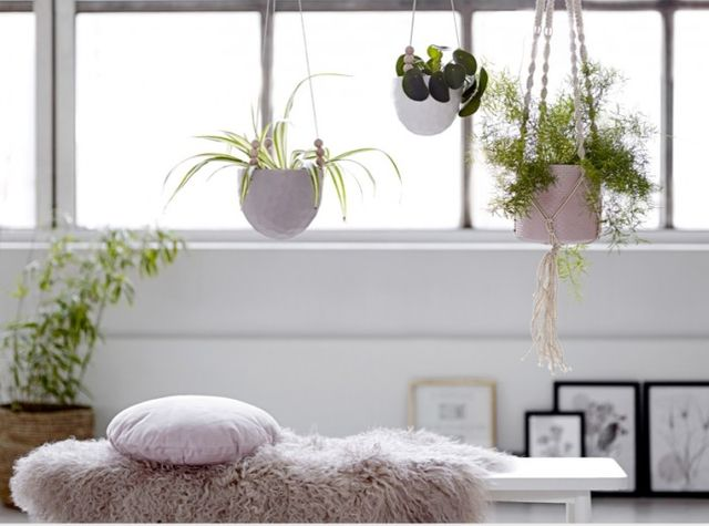 Bring the outdoors inside with these clever hanging planters featured image