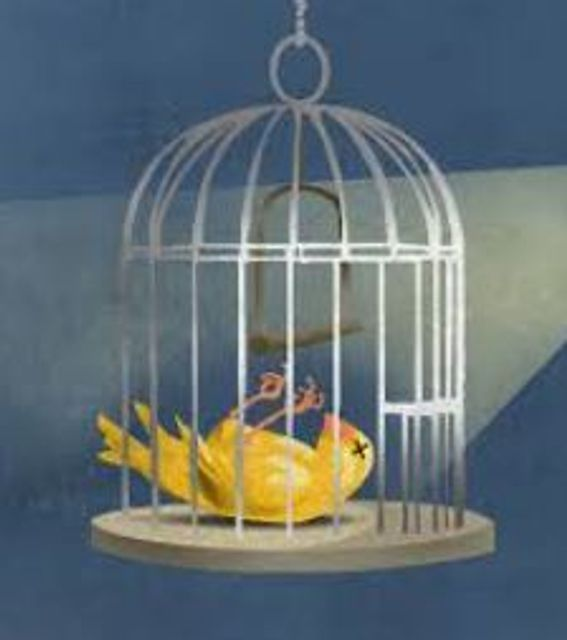 Canary & More on Cybersecurity due diligence in M & A featured image