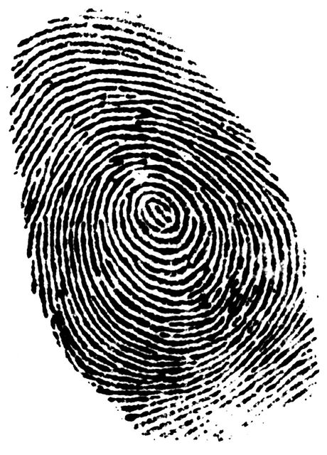 German minister photo fingerprint 'theft' seemed far too EASY, wail securobods featured image