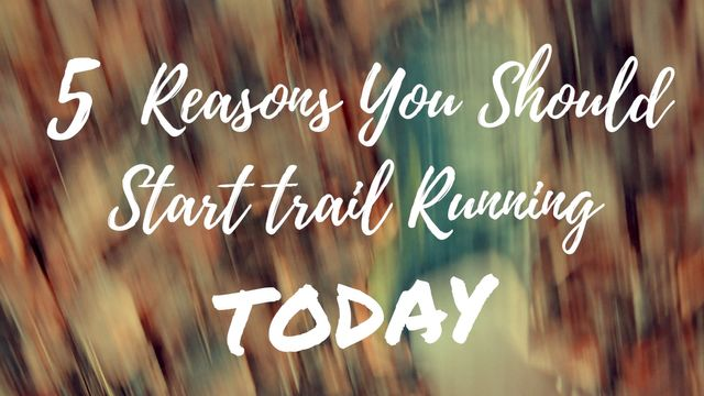 5 Reasons You Should Run Trails TODAY featured image