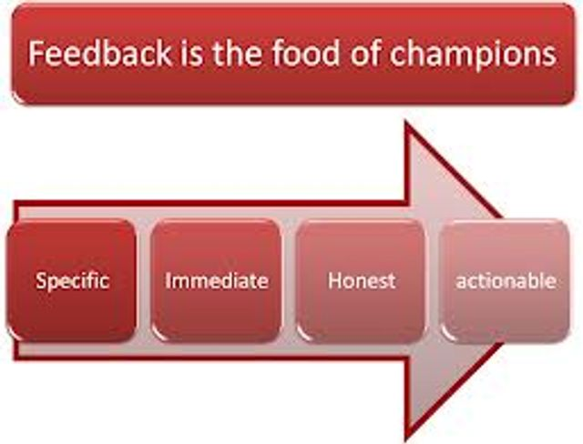 Feedback is the food of champions featured image