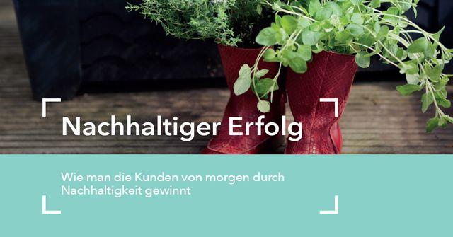 Nachhaltig zum Erfolg im deutschen Einzelhandel featured image
