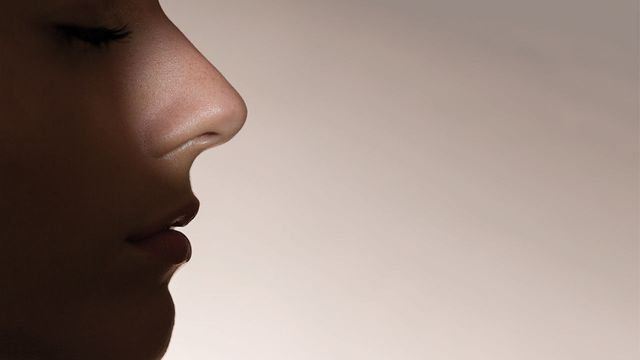 Artificial intelligence grows a nose featured image