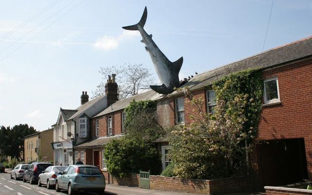 Sharknado: Could the 'Oxford Shark' be Britain's strangest heritage asset? featured image